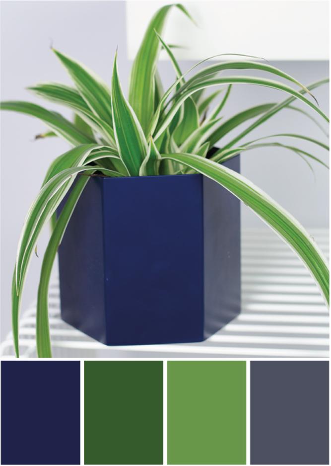 Farbpalette grün dunkelblau - Tweed & Greet