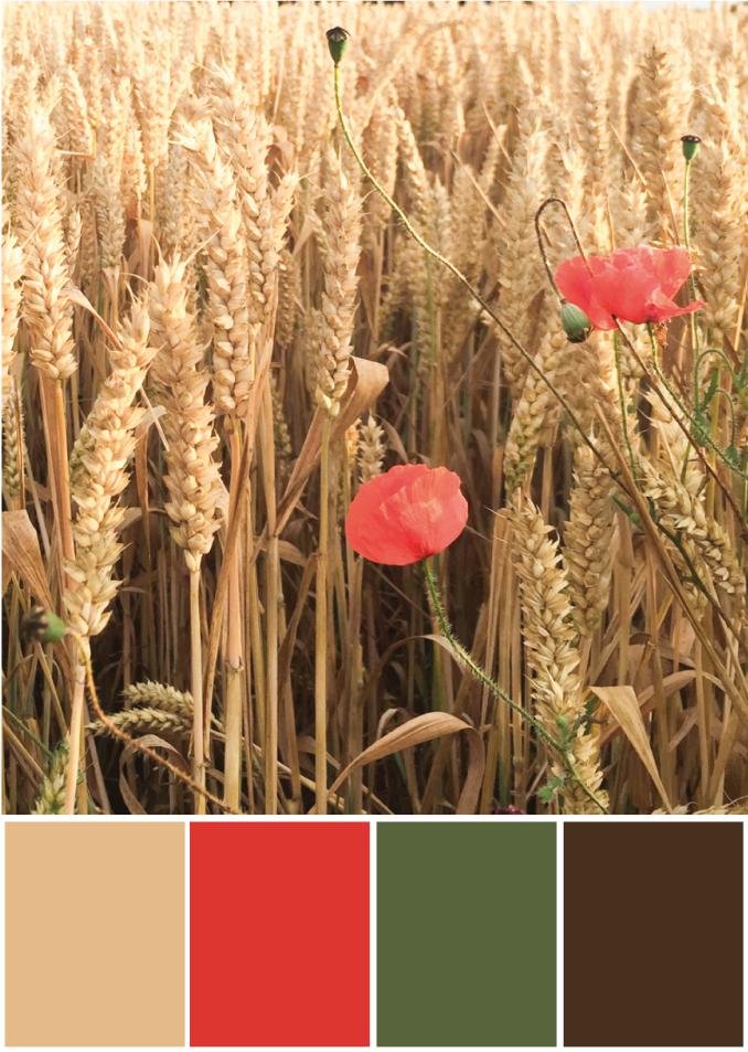 Farbpalette Beige rot - Tweed & Greet