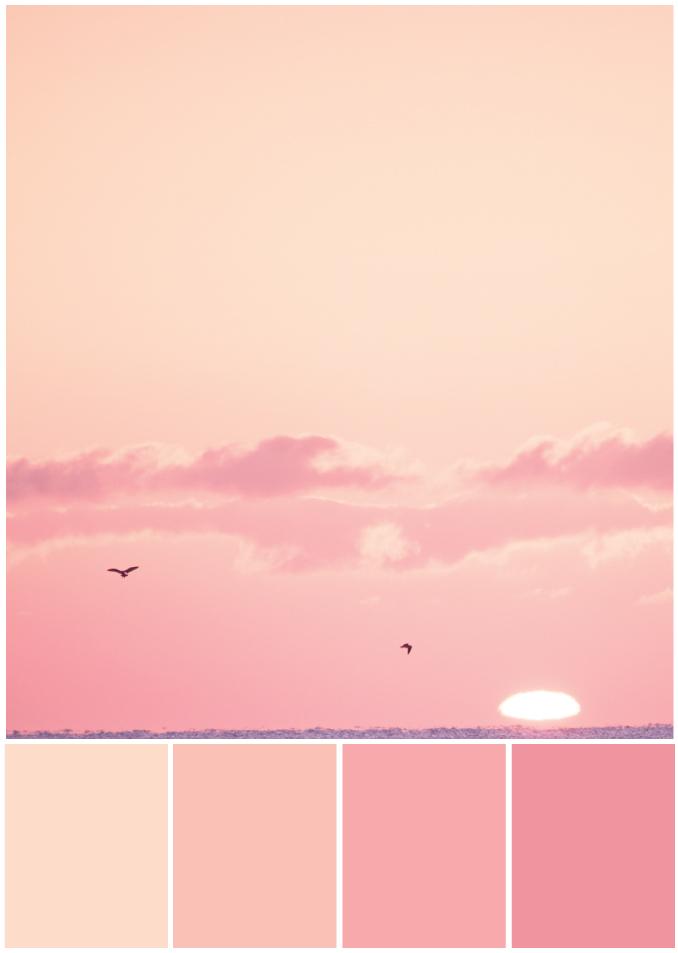 Rosatöne Monochrom - Tweed & Greet