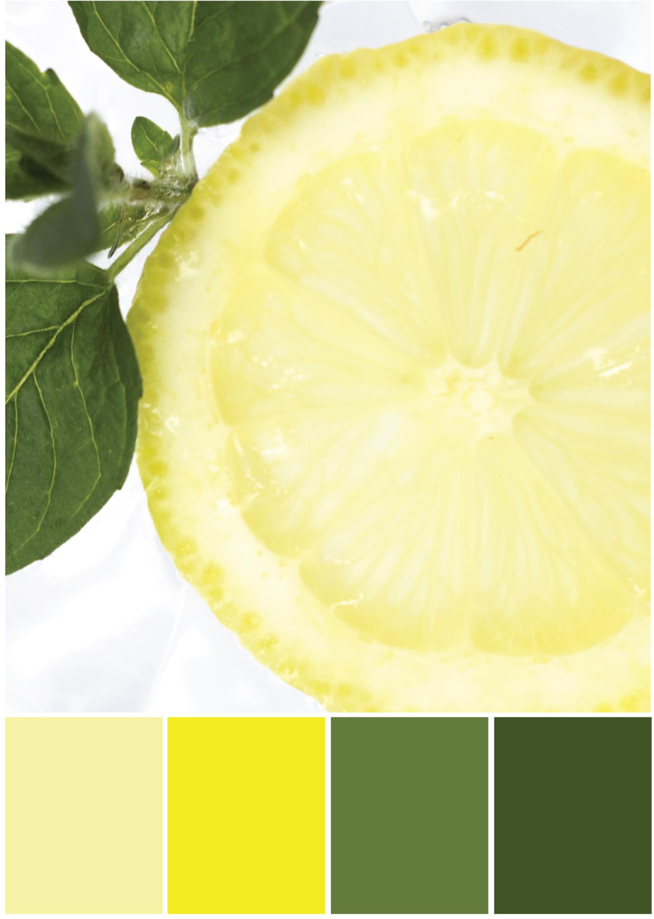 Gelb - Grüne Farbpalette - Tweed & Greet