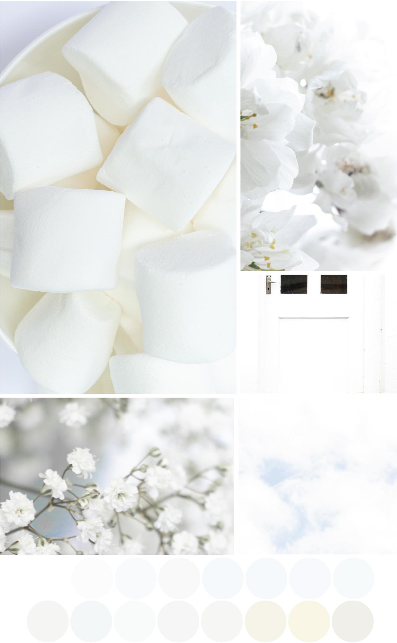 Farbpalette Weiß - Tweed & Greet