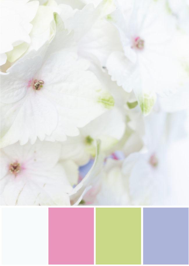 Farbpalette Kombination Weiß, pink, grün, lila - Tweed & Greet