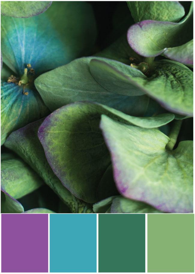 Farbkombinationen Lila Petrol Grün - Farbpalette Hortensie - Tweed & Greet