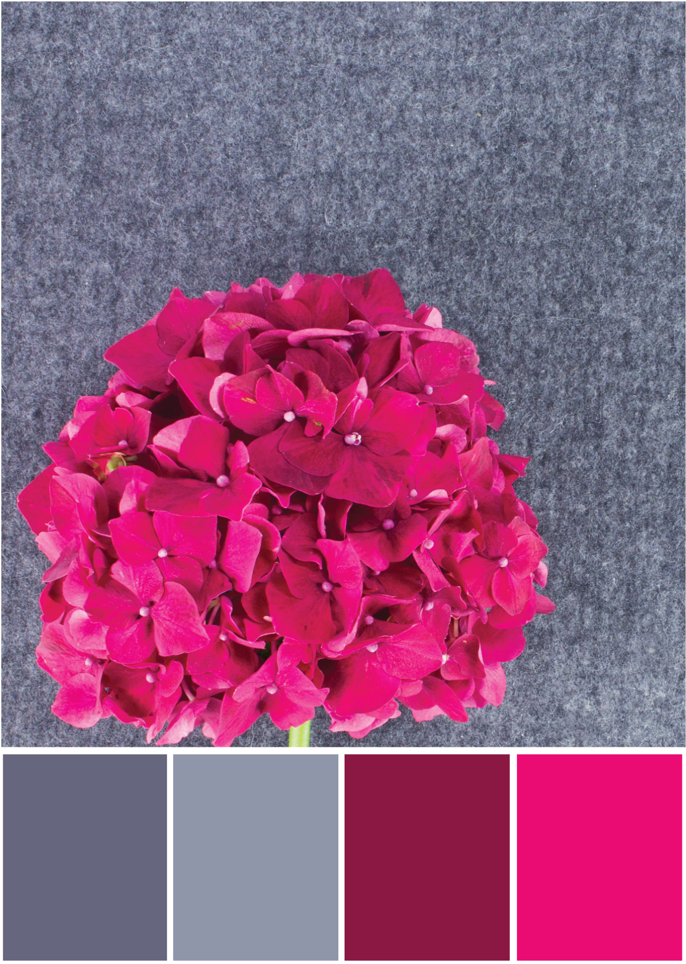 Farbpalette Grau - Pink -Tweed & Greet